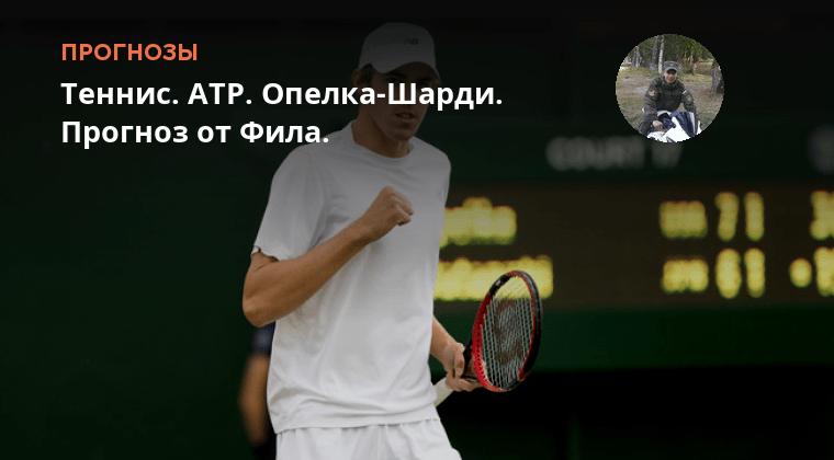 Теннис Дустов-башич Прогноз
