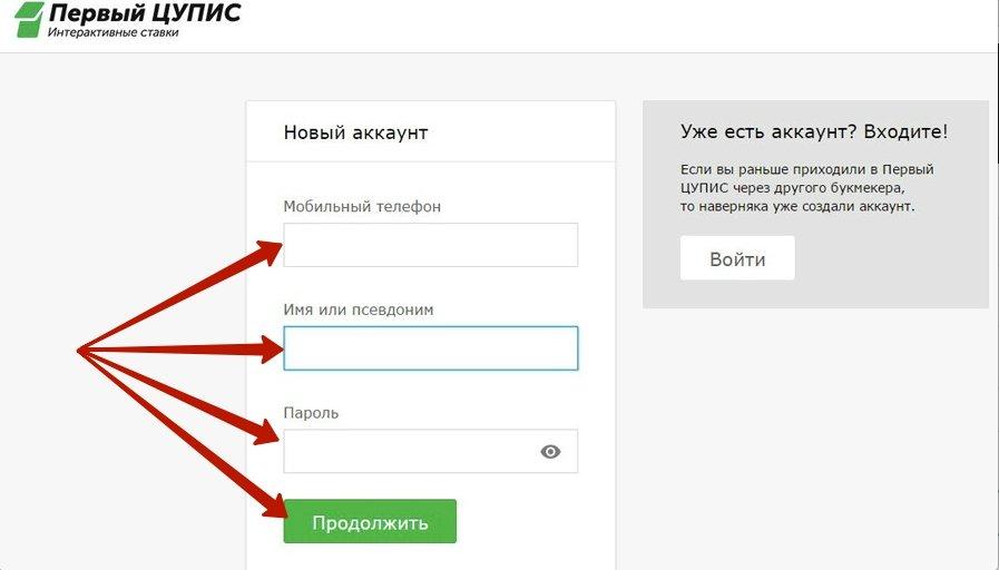 Регистрация в ЦУПИС 1