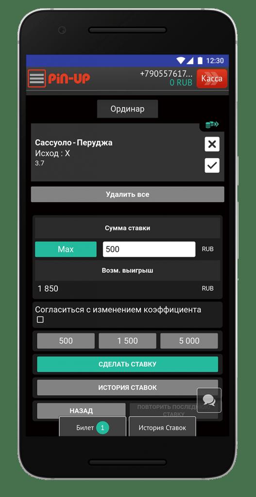screen-pin-up-bet-14
